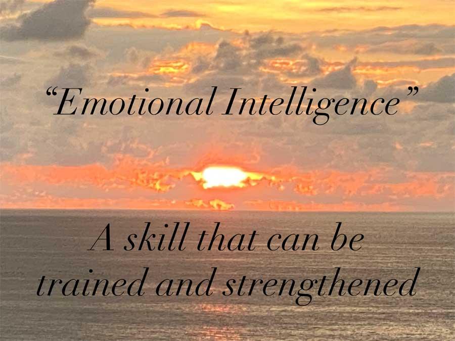 Oasis4Humanity- Emotional Intelligence